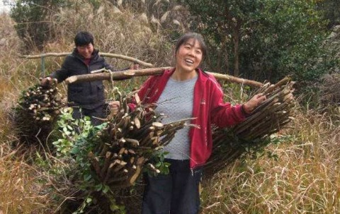 农村妇女在家赚钱